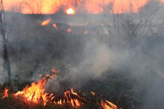 fire-1265716_1280.jpg