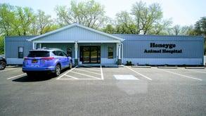 modular animal hospital