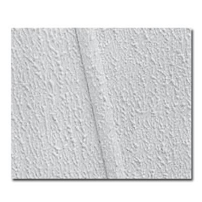 Interior Ceiling seaspray