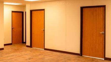 Interior-Door-woodgrain-photo-1