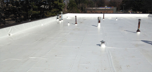 Exterior Finish Roof EPDM White Roof